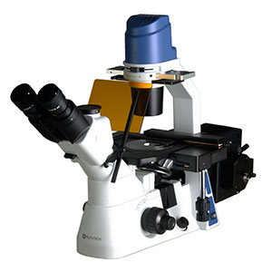 Fluorescence Microscopes